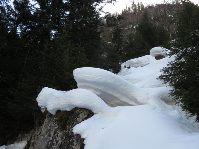 """am nordseitigen Hang teilweise noch ein """"guter Meter"""" Schnee"""
