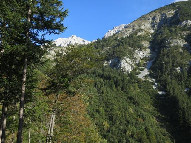 Anstieg auf die Aspachhütte, knapp nach Gasthof Rauschbrunnen