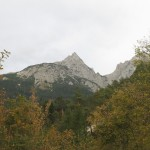 Die Fallbachkarspitze