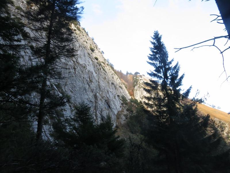 in der Klamm knapp oberhalb des Wasserfalles