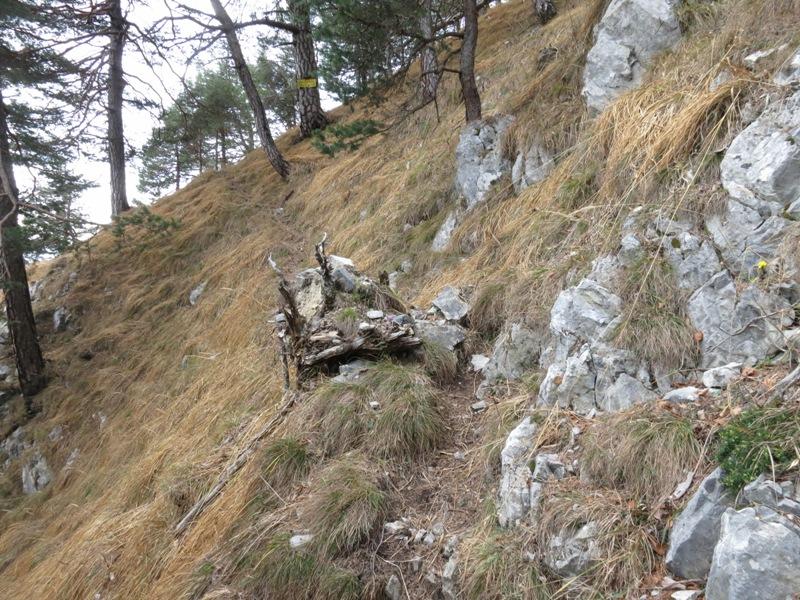 Abzweigung vom Schleifwandsteig