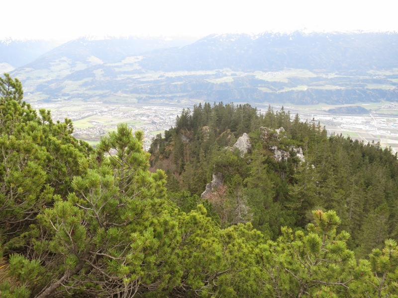 sichtbare Höhendistanz zum Baum mit roten Beeren
