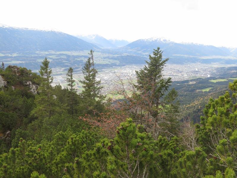 ein Baum mit roten Beeren, man beachte die Höhendistanz zum originalen Ausstieg im nächsten Foto