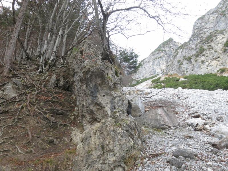 Breccie in der Trennlinie der geolog. Formationen