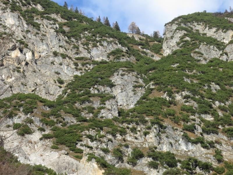 Route von der Weißen Reise zum Hochmahdkopf, deutlich sind die Löcher in den Zuntern zu finden