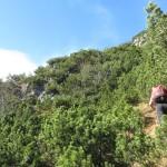 Unterer Teil Des Anstieges Ca Min Nach Dem Einsteig Ab Der Bergwiese