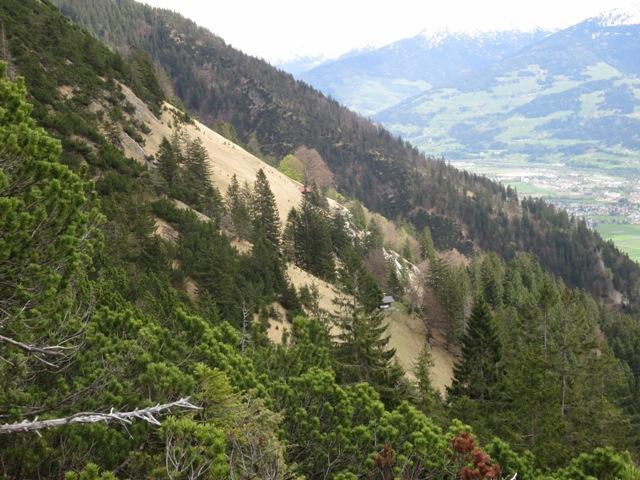 Rückblick auf die Thaurer Mähder am Steig durch die Latschen