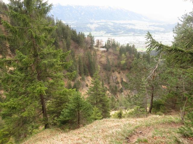 Blick zum Ochsner knapp oberhalb der Abzweigung des Koanzenwandsteiges