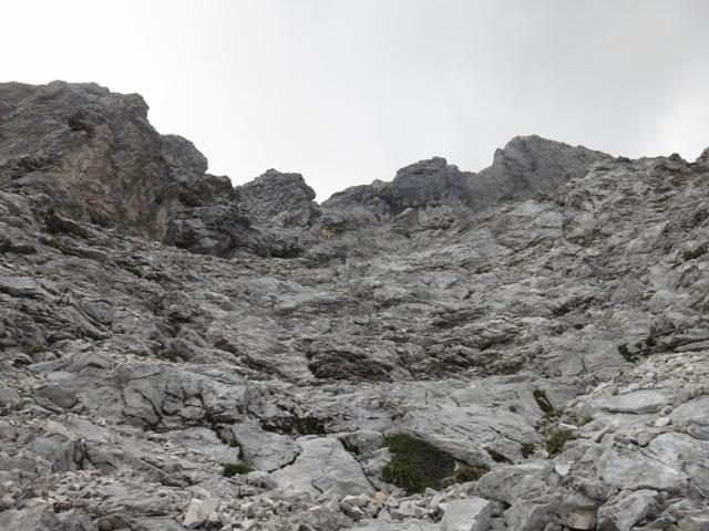 Einstieg zur leichten Kletterei nach der Latschengrenze, rechts neben einem senkrechten Felsköpfl