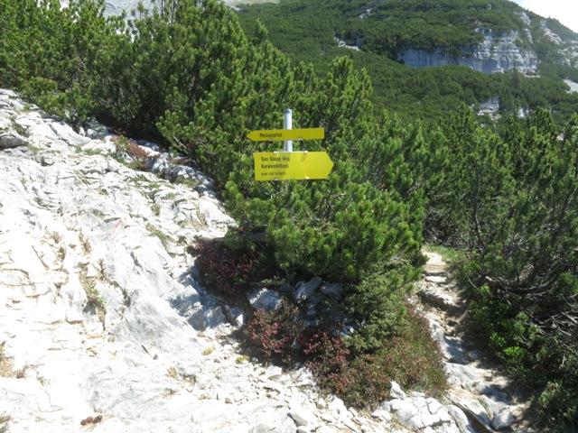 Abzweigung Steig zur Pleissenspitze und Toni Gaugg Weg