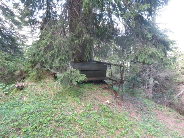 alter Jagersitz, Aussicht auf das Wild in den Bluetsgraben Schrofen nahezu total verwachsen