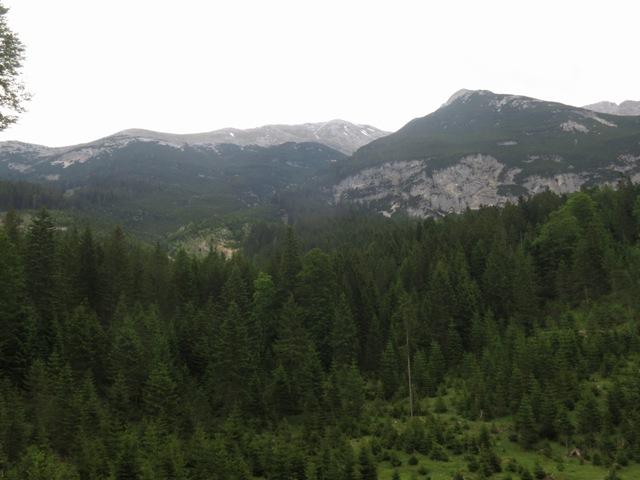 ganz links die Senke, der Westgrat mit dem Gipfel und im Latschenhang darunter der Abstieg