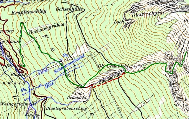 Aufstieg vom Forstweg entlang dem Bluetsgraben bis über die Latschen hinaus