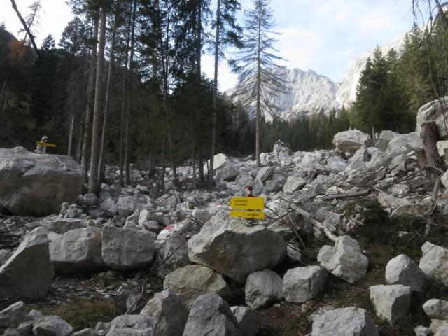 Alpbachsteig, sicher recht interessant für Kinder