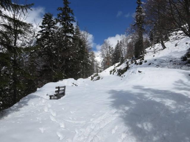 ab ca. 1.250m genug Schnee für den rest der Tour