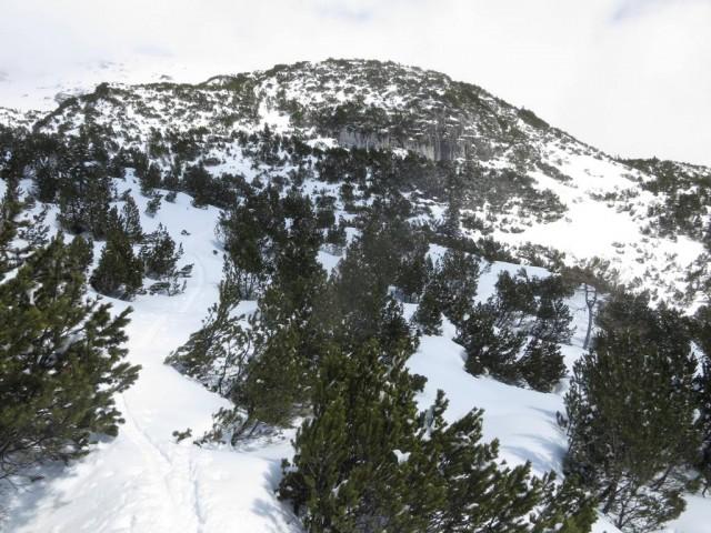das Aufstiegsgelände im mittleren Teil der Latschen