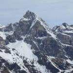 noch einmal den alles beherrschenden Gipfel in der Gegend, Pflerscher Tribulaun