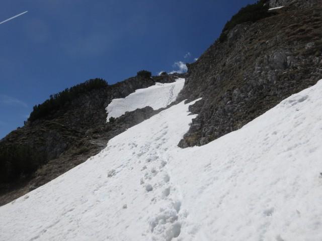 am Weg zur Lattenspitze, ca. auf 2.000m