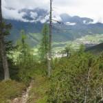 wunderschöner Aufstieg im Wald am Rücken