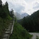 Rückblick am Ende des Forstweges, bei der Einmündung in den Besinnungsweg