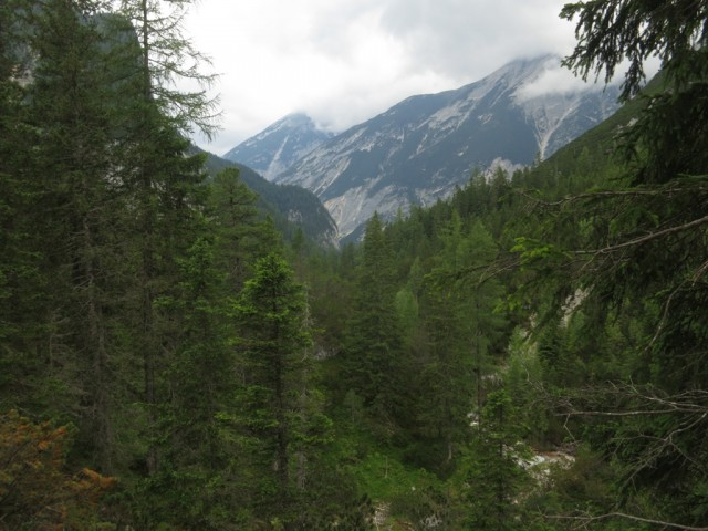 Blick talauswärts mit Gupenkopf südlich und nebelverhülltem Spitzhüttenkopf
