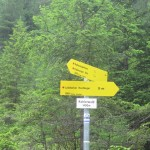 im Kohlerwald