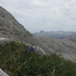 Blicke in die Karwendelhauptkette