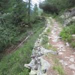 aufwändig gebauter Steig im Kiefernwald