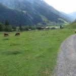 kurz vor der Touristenrast, allein der Abschnitt bis zur Seilbahn hat wegen ihrer Schönheit einen Besuch verdient.