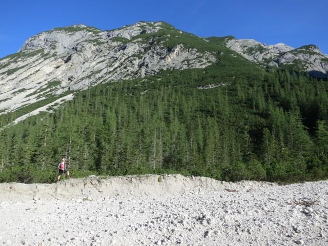 Lärchenwald am Beginn des Steiges ins Moserkar; links in den Zuntern geht es auf den Kleinen Heissenkopf
