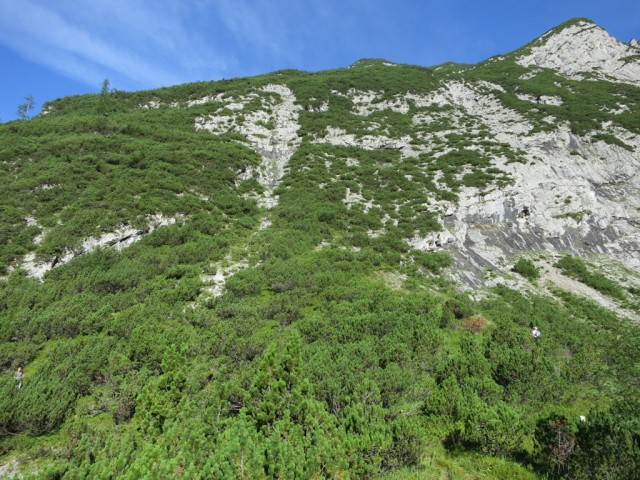 Abzweigung zum Steig auf den Kleine Heissenkopf; der Steig führt am Steilhang links weiter