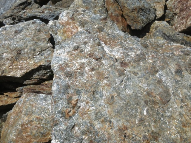 Granateinschlüsse im Glimmerschiefer und Gneis