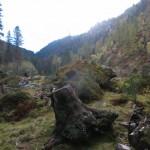 knapp vor der Jagdhütte