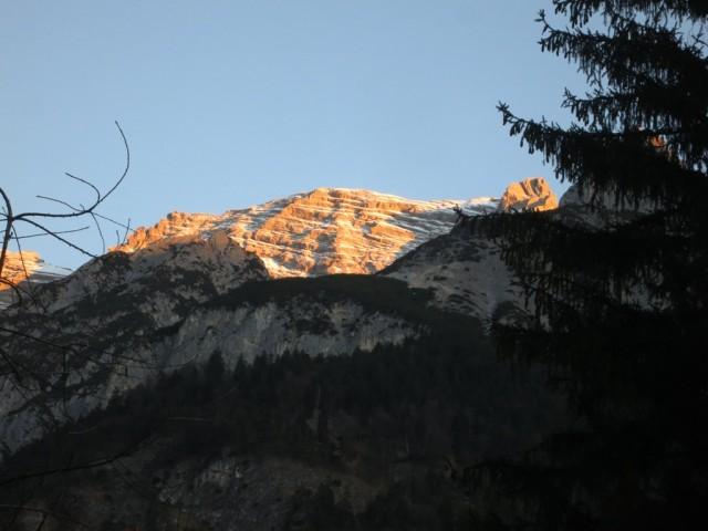 das Zeil nach 8 Uhr im Morgenlicht beleuchtet