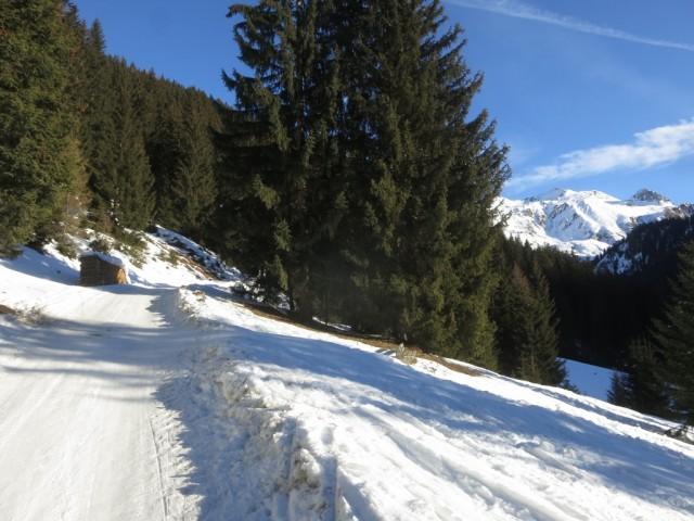 Aufstieg entlang der Rodelbahn